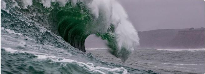 "An Analyst said Should any of these 3 crypto Companies collapse, a ""tsunami"" will result."